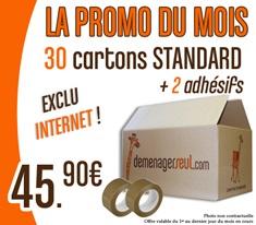 PROMO 30 Cartons standard + 2 Adhésifs